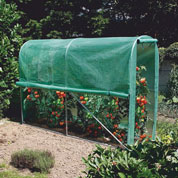 Tunnel-shaped greenhouse for Tomatoes - 3 m²